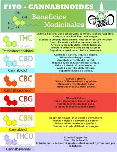 I Cannabinoidi Medicinali