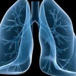 Cura dell'Asma ed Effetto Broncodilatatore della Cannabis