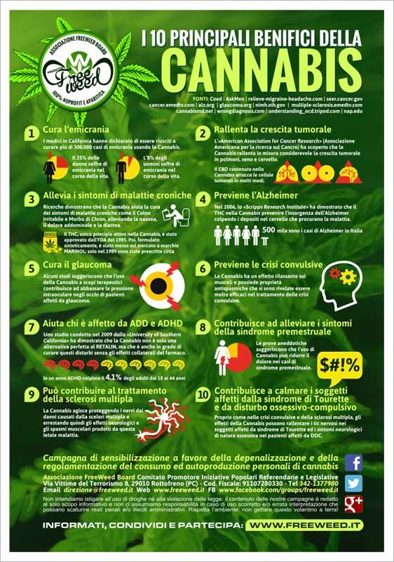 I 10 principali benefici della Cannabis - Volantino A4 a colori