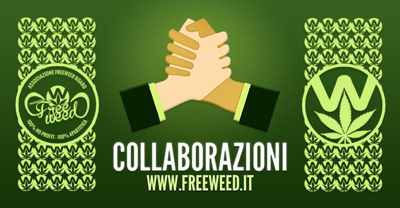 Collaborazioni Progetto FreeWeed