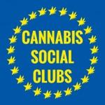 Cannabis Social Club: l'importanza del Codice di Condotta