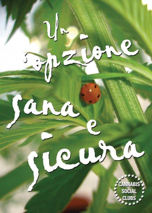 Cannabis Social Club: un'azione sana e sicura! - Campagna 2012 - Volantino Front