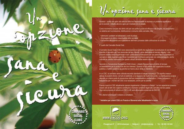 Cannabis Social Club: un'opzione sana e sicura - Volantino Encod