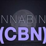 """Il Cannabinolo CBN: il """"Cannabinoide del Sonno"""""""