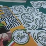 Torino: Assolto per coltivazione di 12 piante di cannabis per uso personale