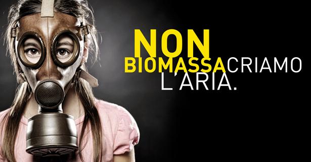 Canapa inquinata per gli impianti a biomassa in due proposte legge e 12 nuovi inceneritori nel decreto del governo