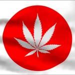 La storia segreta della Cannabis in Giappone