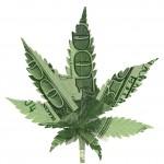Perchè Legalizzazione potrebbe non significare che puoi autoprodurre
