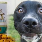 Croccantini con CBD per trattare dolore, displasia ed epilessia negli animali domestici