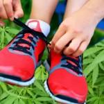 Endocannabinoidi ed Esercizio Fisico