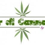 """Nasce """"Fior di Cannabis"""", il primo gelato al mondo alla cannabis"""