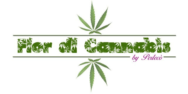 http://freeweed.it/wp-content/uploads/2016/03/fior-di-cannabis-640x320.jpg