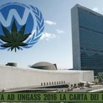 Inviata ad UNGASS 2016 la Carta dei Diritti per la Cannabis