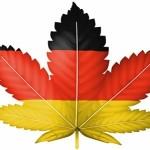 La Suprema Corte della Germania concede il primo permesso di coltivazione personale