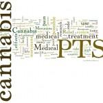 La DEA approva il primo studio sulla cannabis come trattamento per la Sindrome Post-Traumatica