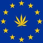Legalizzare la cannabis nell'Ue toglierebbe alla criminalità organizzata 13 miliardi l'anno
