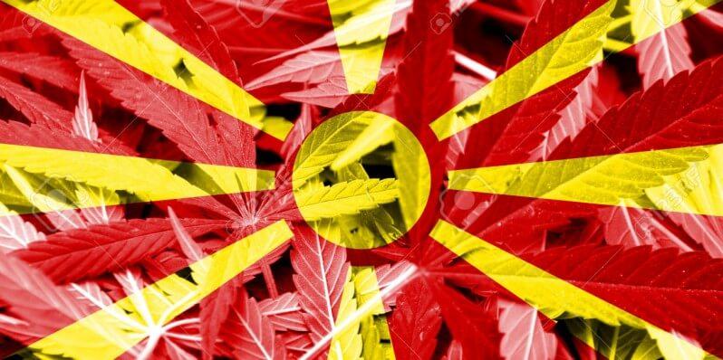 Macedonia Flag on cannabis background. Drug policy. Legalization of marijuana