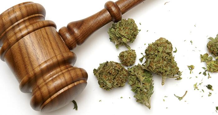 hamg-marijuana-law