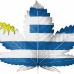 Uruguay: Cannabis in farmacia da fine maggio 2016
