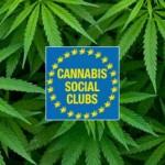 Barcellona aggiorna il regolamento per quanto riguarda i requisiti dei CSC