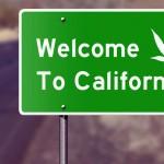 California pronta a legalizzare la Cannabis per uso ricreativo al voto di novembre