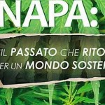 La cannabis ci salverà dall'inquinamento