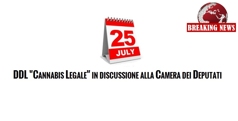 Ddl cannabis legale in discussione alla camera dei for Rassegna stampa camera deputati