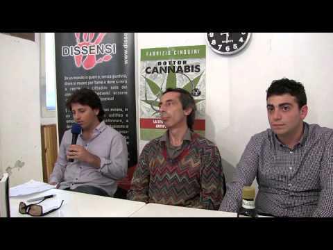 Assolto Fabrizio Cinquini, il medico che coltivava Cannabis