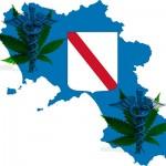 Il Governo impugna la legge sulla Cannabis Terapeutica della Regione Campania