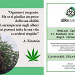 Medical Cannabis, il farmaco più richiesto dagli intoccabili: Studio Osservazionale del Dr. Fagherazzi