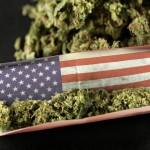 In America si vota per la legalizzazione: ecco i dati del 2016
