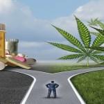 5 tipologie di farmaci che la Cannabis potrebbe (e dovrebbe) sostituire