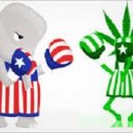 In America un produttore privato di antidolorifici sta finanziando la lotta alla legalizzazione della Cannabis
