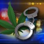 Autoproduce Cannabis per Uso personale: Arrestato nonostante la dimostrazione delle prove