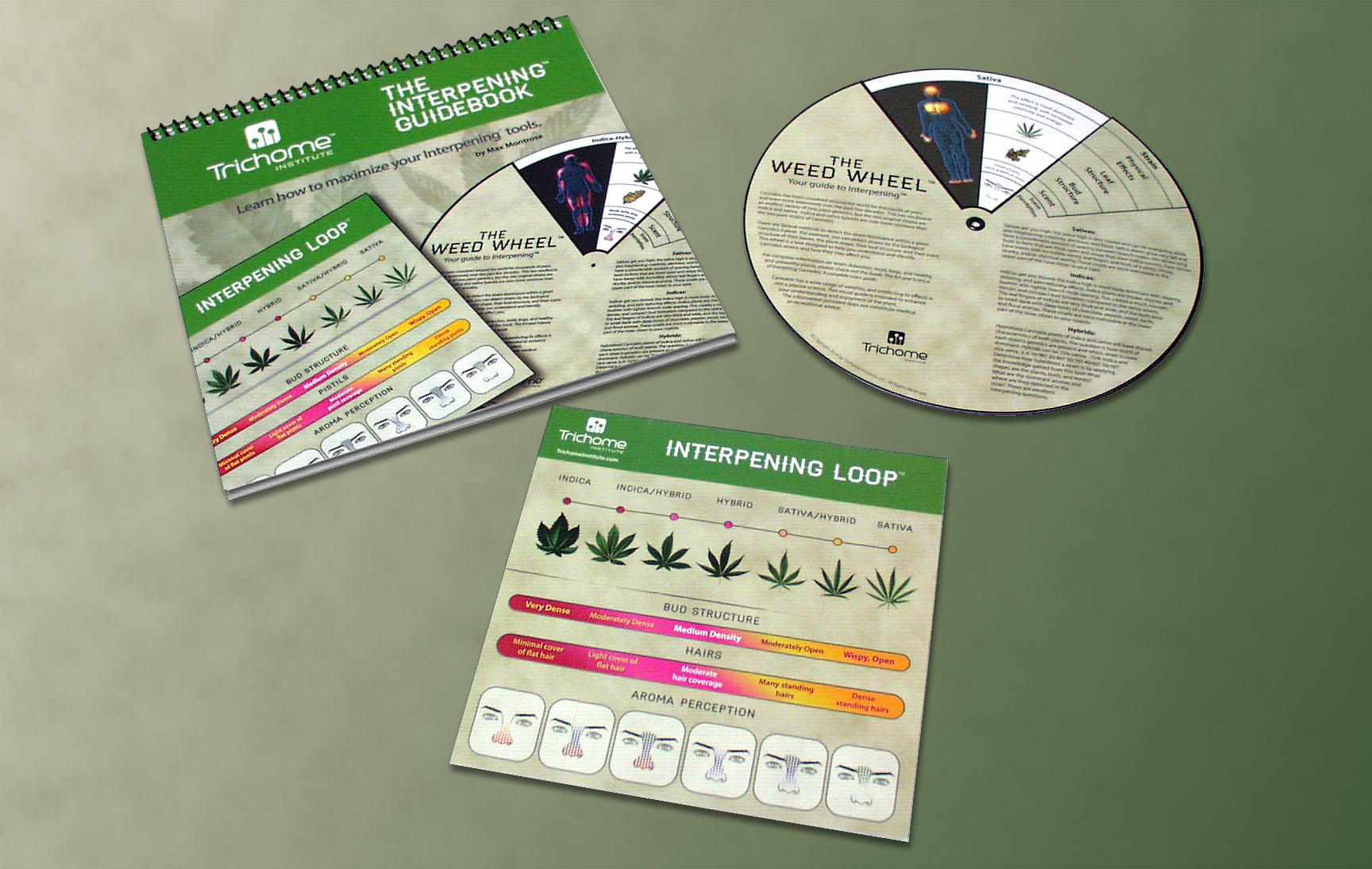 In Colorado apre un corso per abbinare la Cannabis agli alimenti