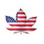 Pronostici sulle iniziative negli USA: su 9 stati, in 4 stati probabilmente sarà legale