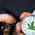 La Cannabis riduce l'ipertensione?
