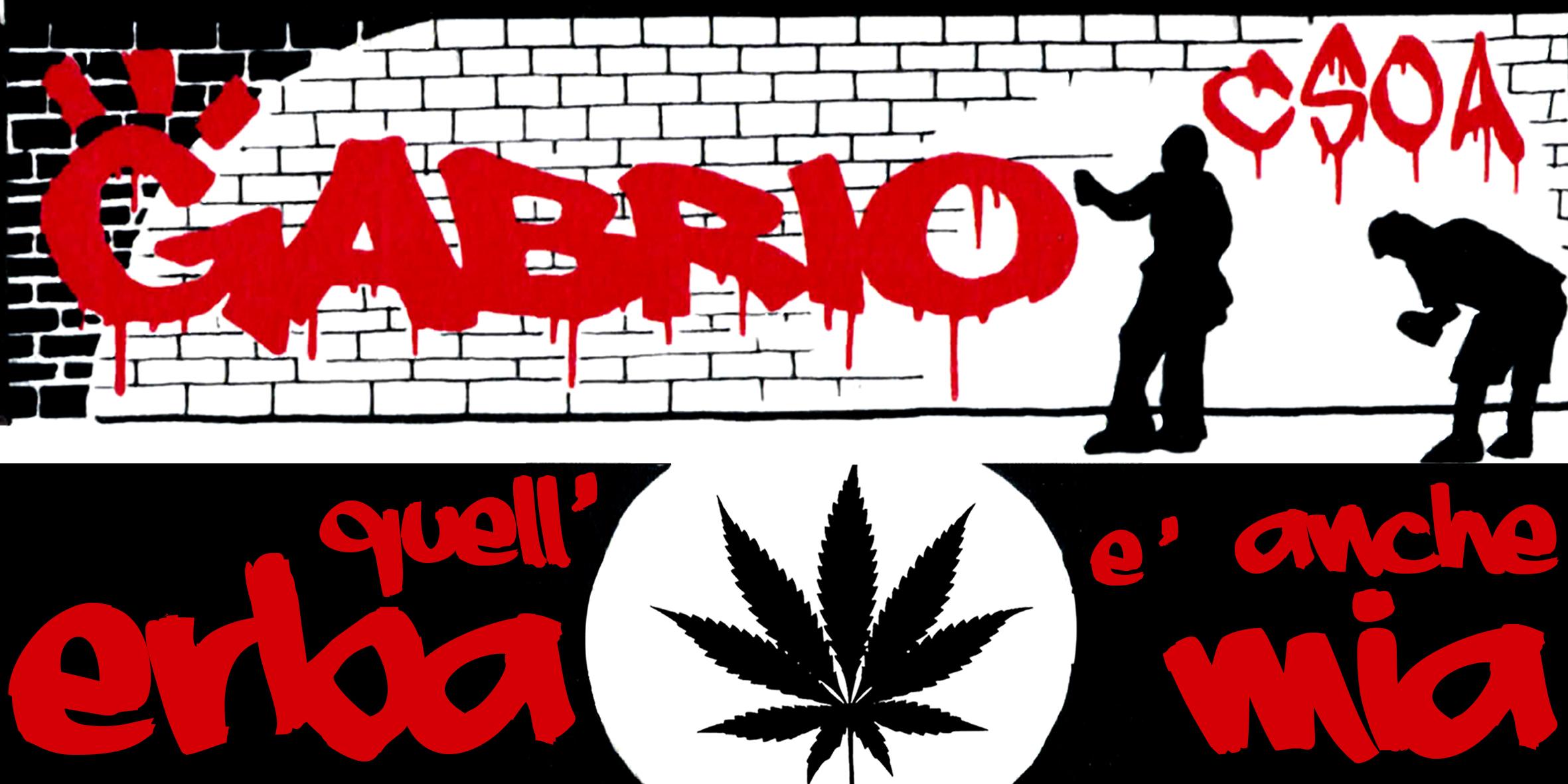 """Campagna Ufficiale: """"QUELL'ERBA E' ANCHE MIA!"""""""