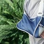 Studio: CBD promettente come trattamento per le ossa rotte