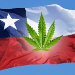 Nasce in Cile il primo Club di coltivazione per la Cannabis Terapeutica