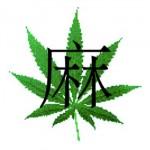 Piante di Cannabis ritrovate in una tomba in Cina: l'ennesima conferma dell'uso sociale