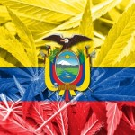 L'Ecuador avvia le procedure per regolamentare la cannabis come terapia