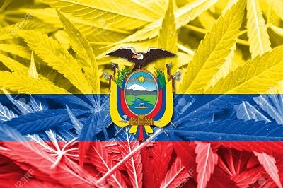 Ecuador Flag on cannabis background. Drug policy. Legalization of marijuana