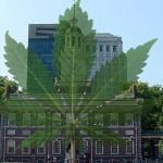 A Philadelphia un sit-in fumando cannabis per commemorare l'avvenuta decriminalizzazione