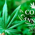 La Copa Cannabica in Uruguay, tra Autocultivadores e Clubs