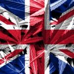 L'Agenzia di regolamentazione dei prodotti della salute britannico (MHRA) ha indicato che alcuni prodotti della cannabis possono valere come medicina