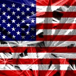Le 9 iniziative sulla cannabis negli Usa alle elezioni del 4 novembre