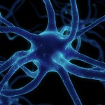 Cannabis e Radioterapia: un aiuto medico