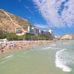 La Città di Alicante stabilisce le regole comunali per i Cannabis Social Clubs