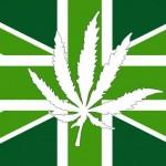 La Legalizzazione nel Regno Unito porterebbe enormi vantaggi per l'economia
